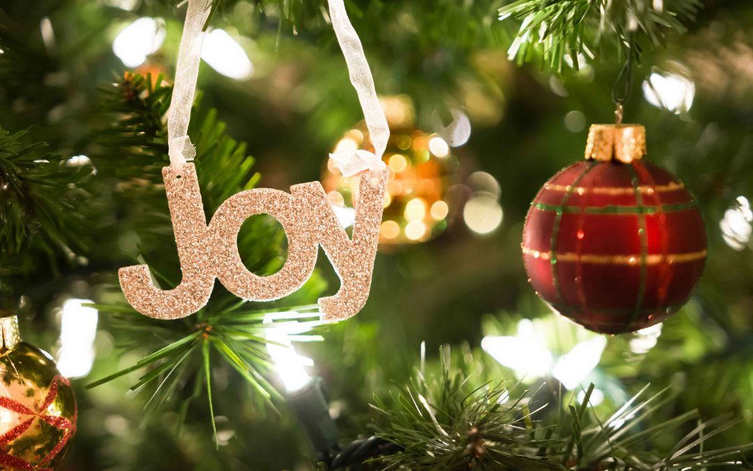 Christmas and the Holidays, a time of Spirit and Joy